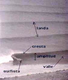 La Física de las olas